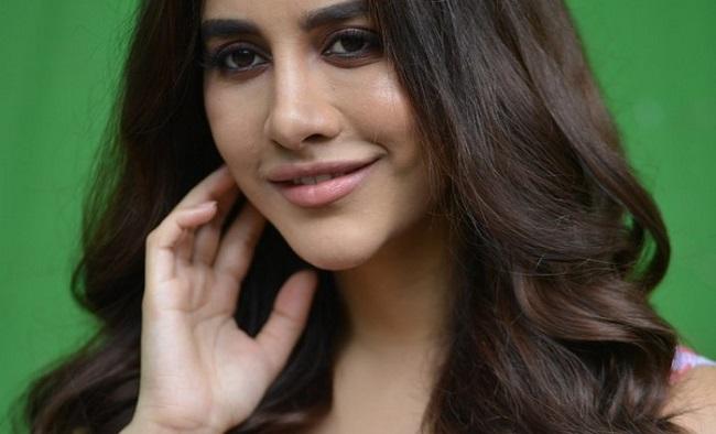 Maestro Will Appear To Be A Fresh Telugu Movie: Nabha