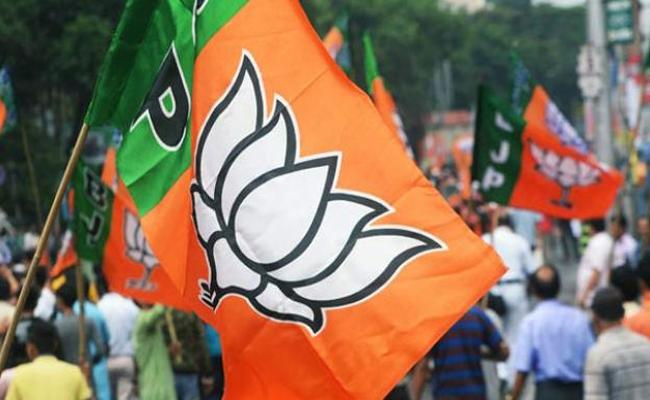 BJP seeks central intervention in local body polls