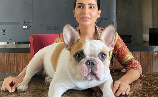 Samantha and her pet dog cannot be beaten in this job!
