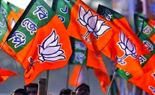 Dubbak bypoll: No official result yet, but Telangana BJP celebrates