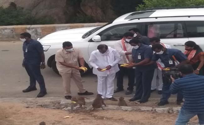 KCR feeds bananas to monkeys at Yadadri