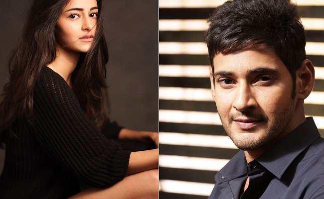 Bollywood Buzz: Ananya Panday opp Mahesh Babu!