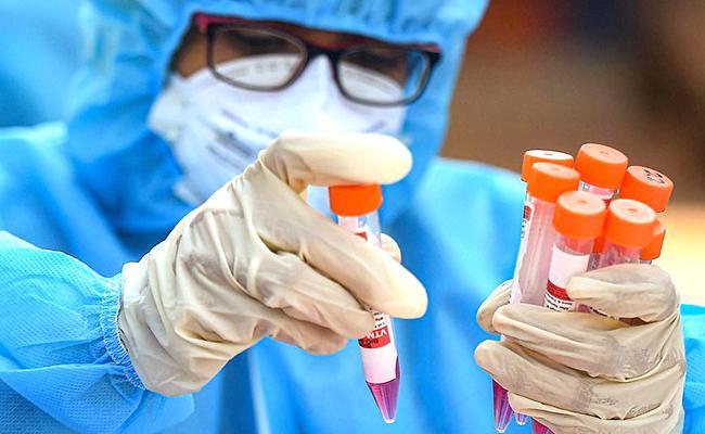 500,000 dead, US begins bending its coronavirus curve
