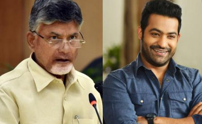 TDP's Future: Neither Chandrababu Gives Nor Jr NTR Takes