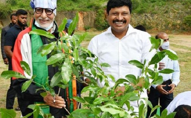 Amitabh Bachchan Endorses Green India Challenge