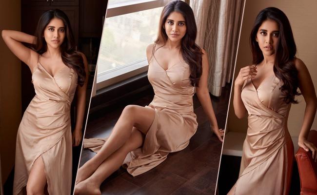 Pic Talk: Irresistible Nabha Natesh