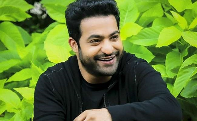 NTR Hunting For Good Bollywood Director