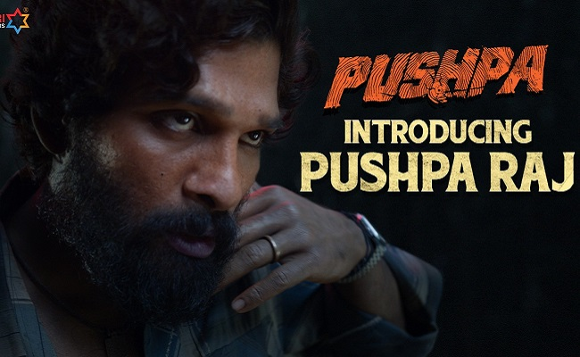 Pushpa Teaser: Majestic and Action-packed